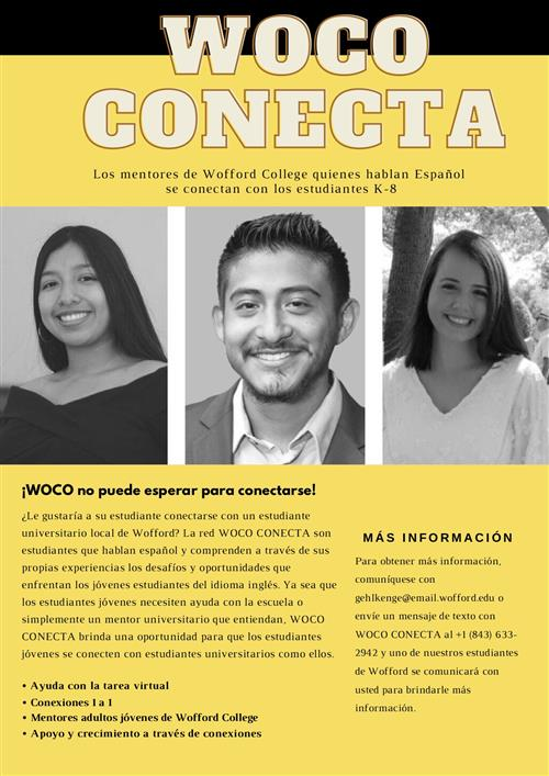 Woco conecta brochure in Spanish